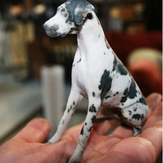 /images/gallery/Dog-in-hand-print-scaled-318.jpg